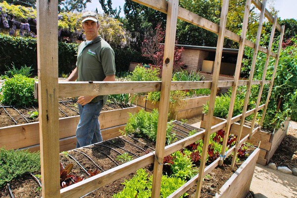 Urban Backyard Farmer : Everything Technoccult has on ?Urbanfarming?