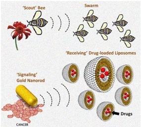 Nanoparticles and insect swarms